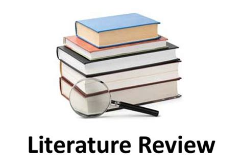 Write literature review example
